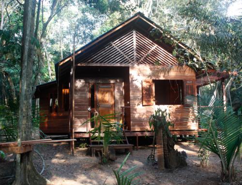 Medium hytte – 58 m2